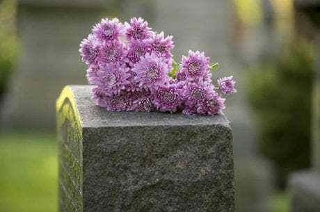 ne-in-cemetery-1600x1065-460x305-min